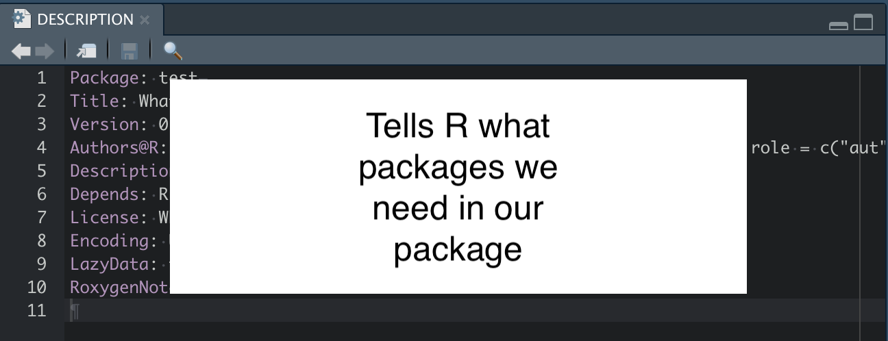 R Package Description Roles